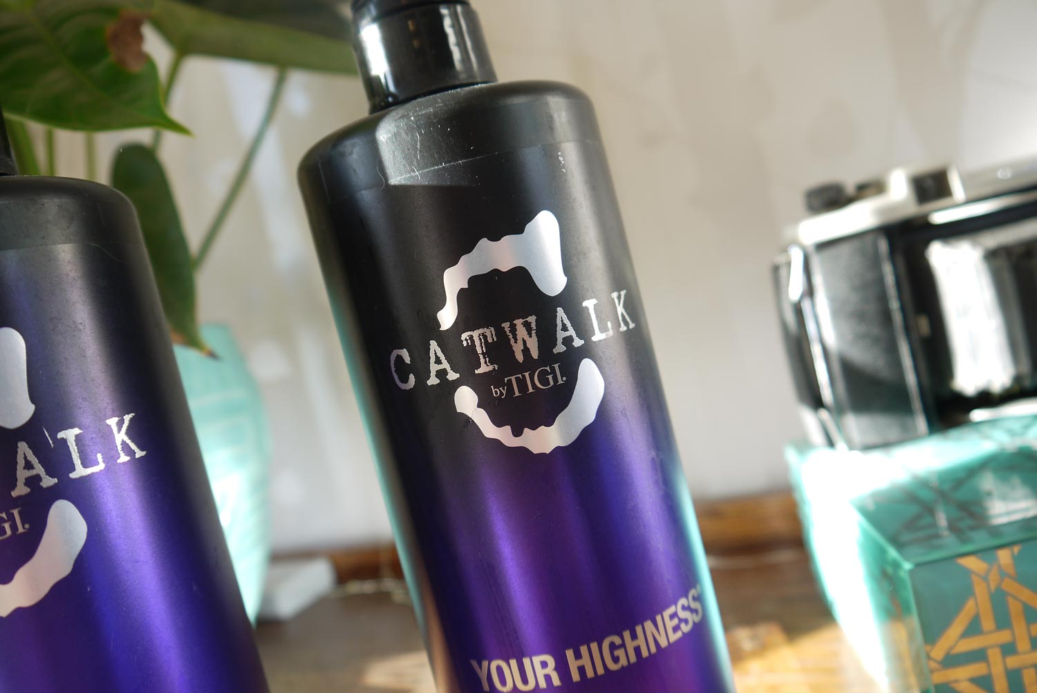 catwalk-your-highness-shampoo-and-conditioner-review.jpg