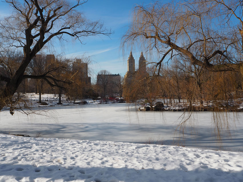 central-park-lake-frozen