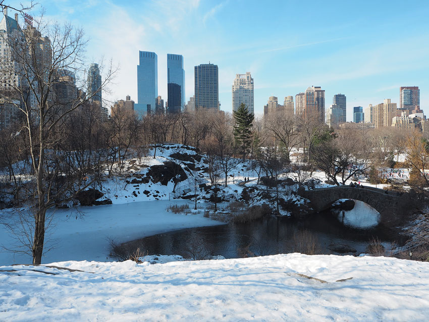 central-park-snow-ice-lake