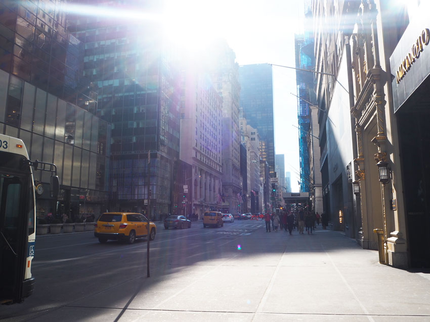 sunshine-on-fifth-avenue