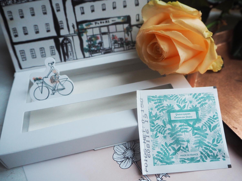 my-little-flower-box-garden