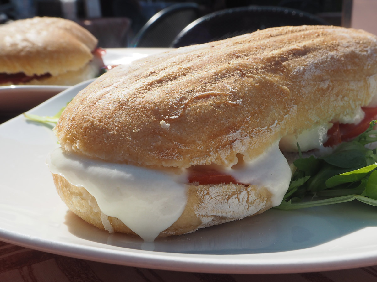 Buffalo Mozzarella and Tomato Panini