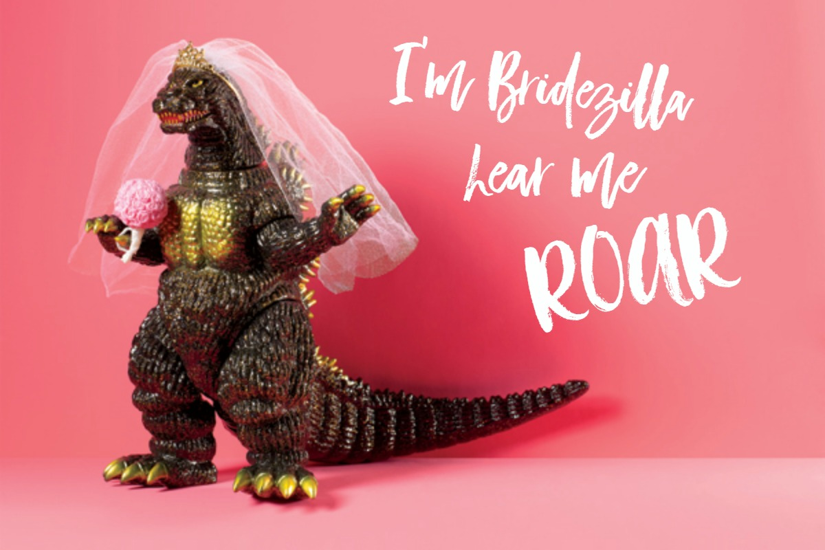 I Might Be Turning Into Bridezilla – Wedding Planning #7